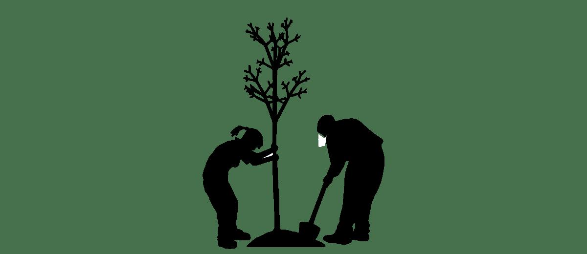 Baum V1-0_Zeichenfläche 1